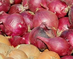 red-shallots-3260186__340.jpg